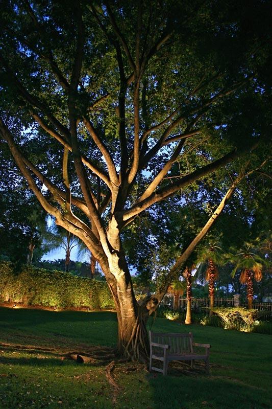 Illuminazione di un giardino